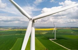 Wind-based Electrification Will Drive Europe to Net Zero: WindEurope