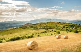 Solving Permission Issues key to Post Pandemic Green Recovery in Italy: WindEurope