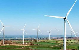 China to add 251 GW of new wind capacity by 2029