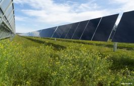 First Solar Sells North American O&M Business to NovaSource