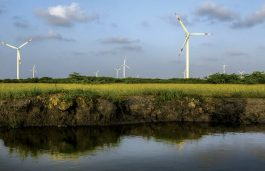 Suzlon Reports net Loss of Rs 399 Crore, Firm Still Positive