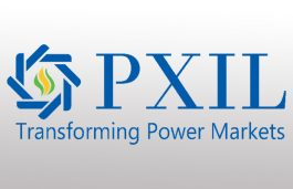 PXIL Celebrates 12th Year Anniversary with Cumulative Volume Growth