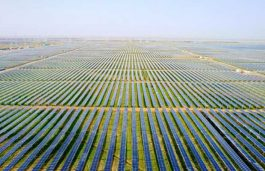 Foresight, Island GP Form JV to Develop 700 MW Solar Projects in the UK
