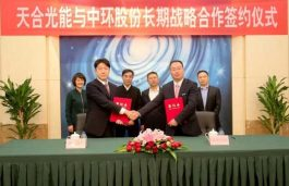 Trina Solar Purchases 1.2 Billion units of 210mm Monocrystal Silicon Wafers in Cooperation with Zhonghuan