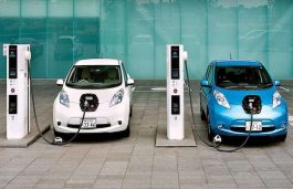 EVs Covers 1.3% of Vehicle Sales in India in FY 20-21