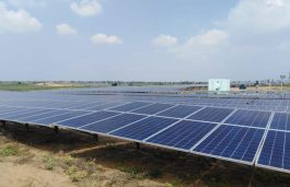 Rays Experts Commissions Solar Projects Worth 700 MW for 230 Clients