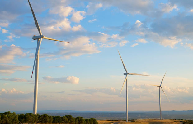wind and renewable energy worldwide