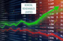 Borosil Renewables, The Newest Renewable Star On The Stock Market