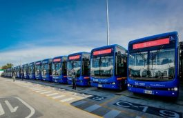 BYD Delivers Huge E-Bus Fleets to Colombia, Japan, and Europe