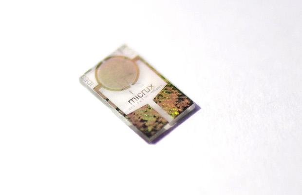 Butterfly Hydrogen Sensor