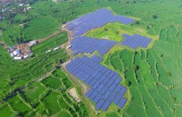 PLN has 'Green Ambition' but is Short on Renewable Energy Credibility: IEEFA