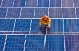 NTPC Seeking Developers for 735 MW Solar Projects in Nokh Solar Park