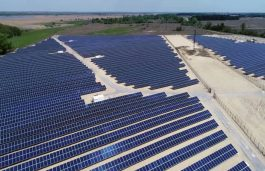 LONGi Supplies 273 MW Modules for 831 MWp Solar Project in Vietnam