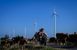 South Asia Should Prioritise Sustainable Energy to Accelerate Economic Recovery: SEforALL