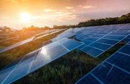 Essar to Commission Rs 300 Cr – 90 MW Solar Plant in Madhya Pradesh