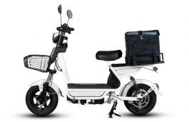 eBikeGo to Recycle EV Batteries Waste, Ties Up with Solar Manufacturers