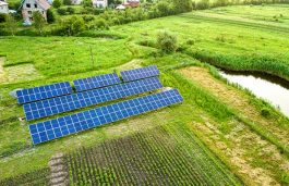 MSEDCL Issues Tender for 487 MW Solar Projects Under Component A of KUSUM Scheme