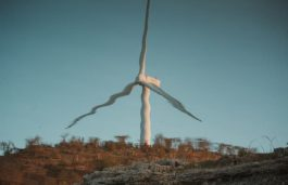 Nearly 30 GW Wind Capacity Auctioned in H2 2020, Growth Back on-Track: GWEC