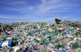 UCR Scientists Upcycle PET Bottles to Make EV Batteries