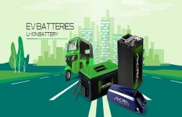 Ruchira Green to Setup Rs 200 Cr Li-Ion Battery Plant