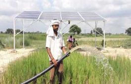 UPNEDA Moves To Initiate 106 MW Solar Plants Under PM KUSUM