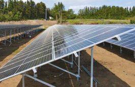 Singareni Collieries Launches 37 MW Solar Plant in Telangana