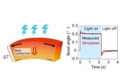 Japenese Study Devises Way to Bend Molecular Crystals Using UV Light