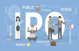 IPO Time For India Solar Equipment Manufacturers In 2021