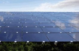 Solar Americas Plans to Deliver 2 GW Commercial PV in Brazil by 2026